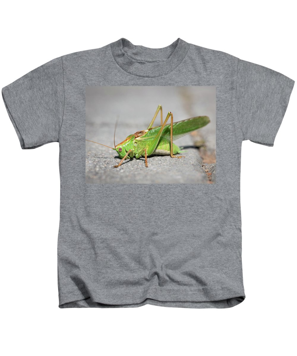 Nature Kids T-Shirt featuring the photograph Portrait Of A Great Green Bush-cricket Sitting On The Pavement by Stefan Rotter