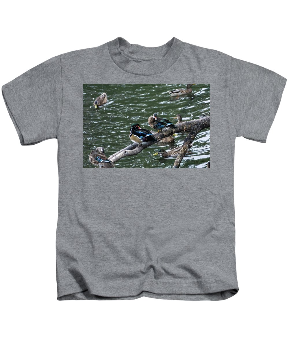 Duck Kids T-Shirt featuring the photograph Resting Ducks by Rob Olivo