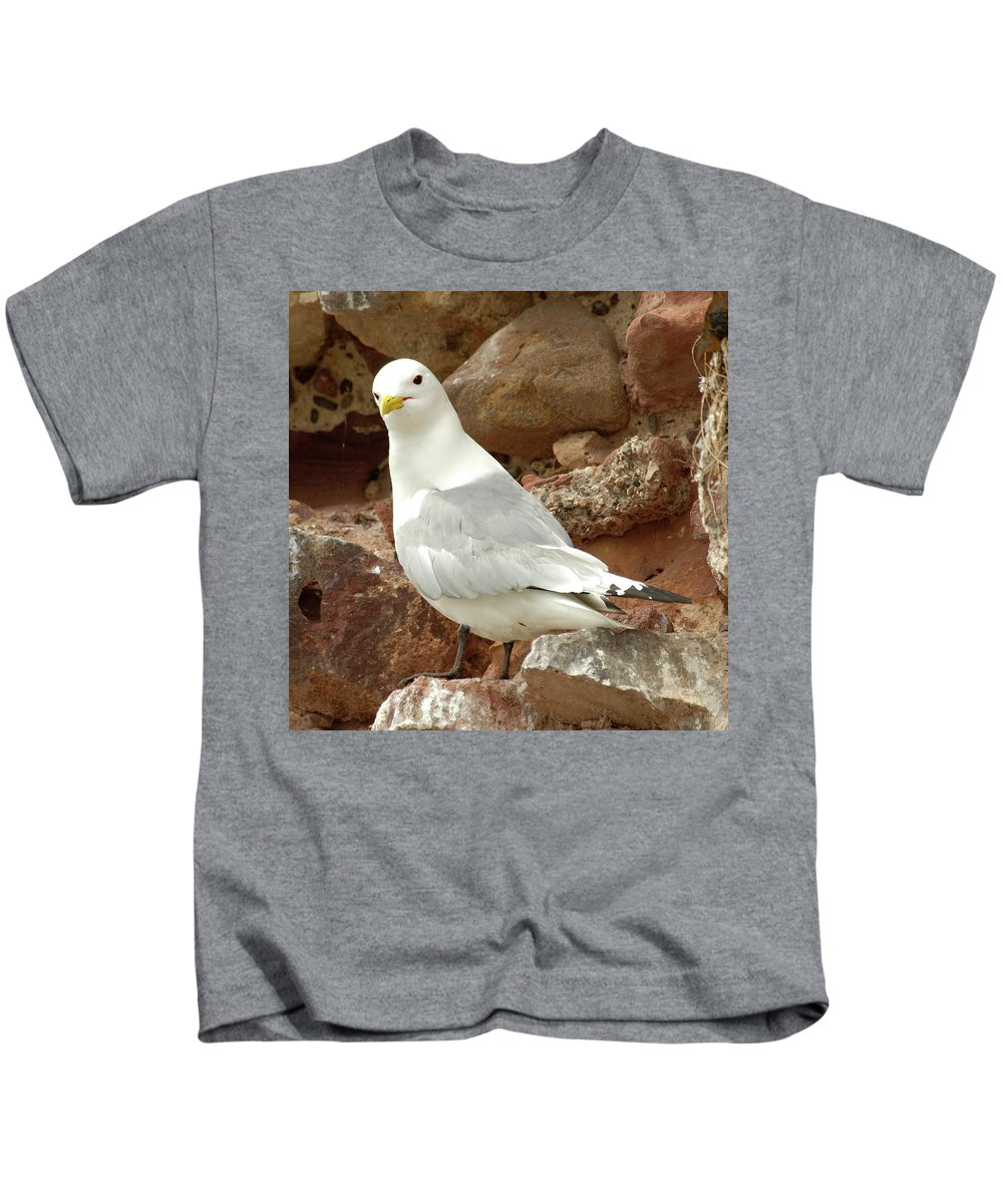 Seagull Kids T-Shirt featuring the photograph Seagull On Rock by Victor Lord Denovan