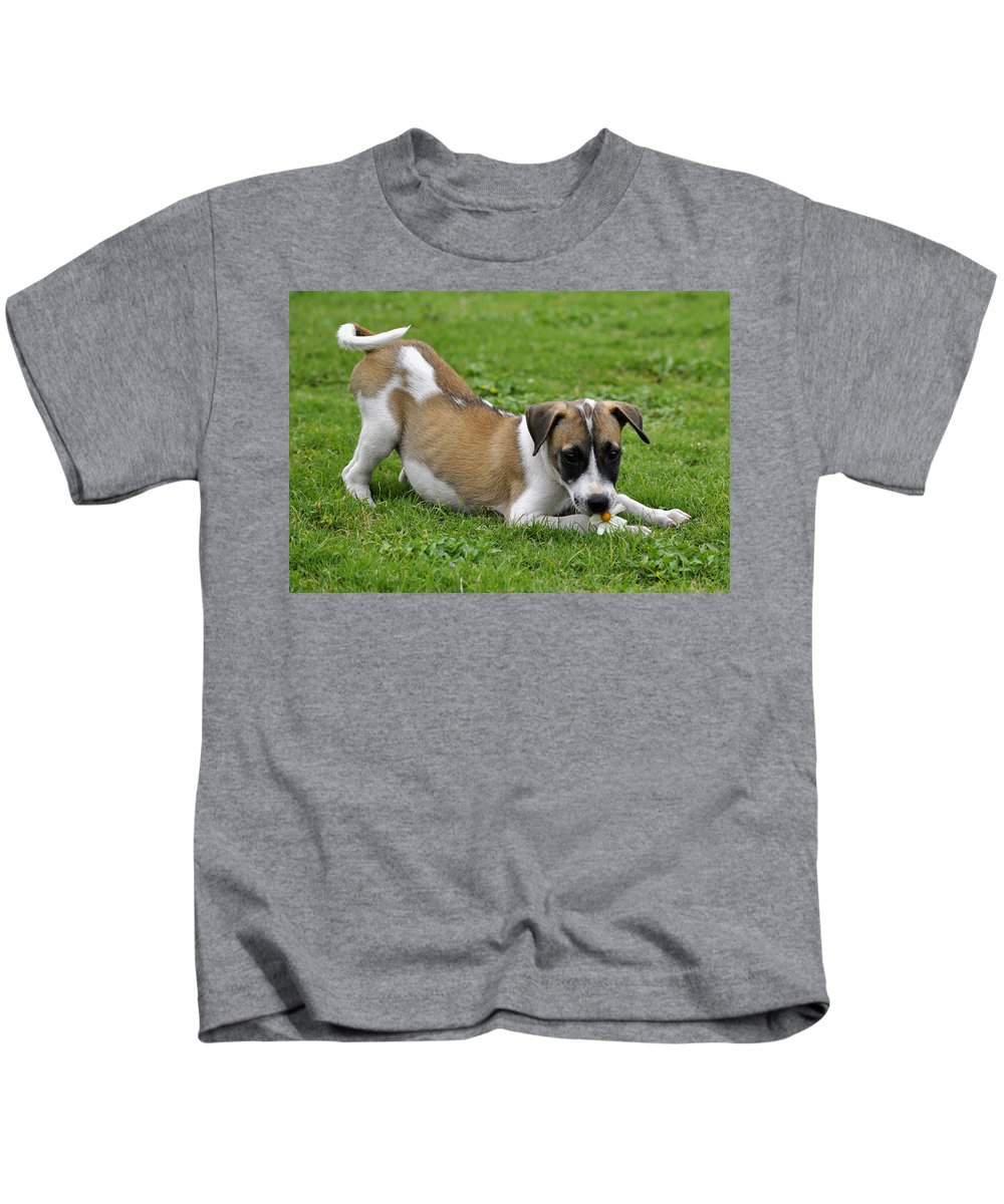 Little Kids T-Shirt featuring the digital art The Little One by Bliss Of Art