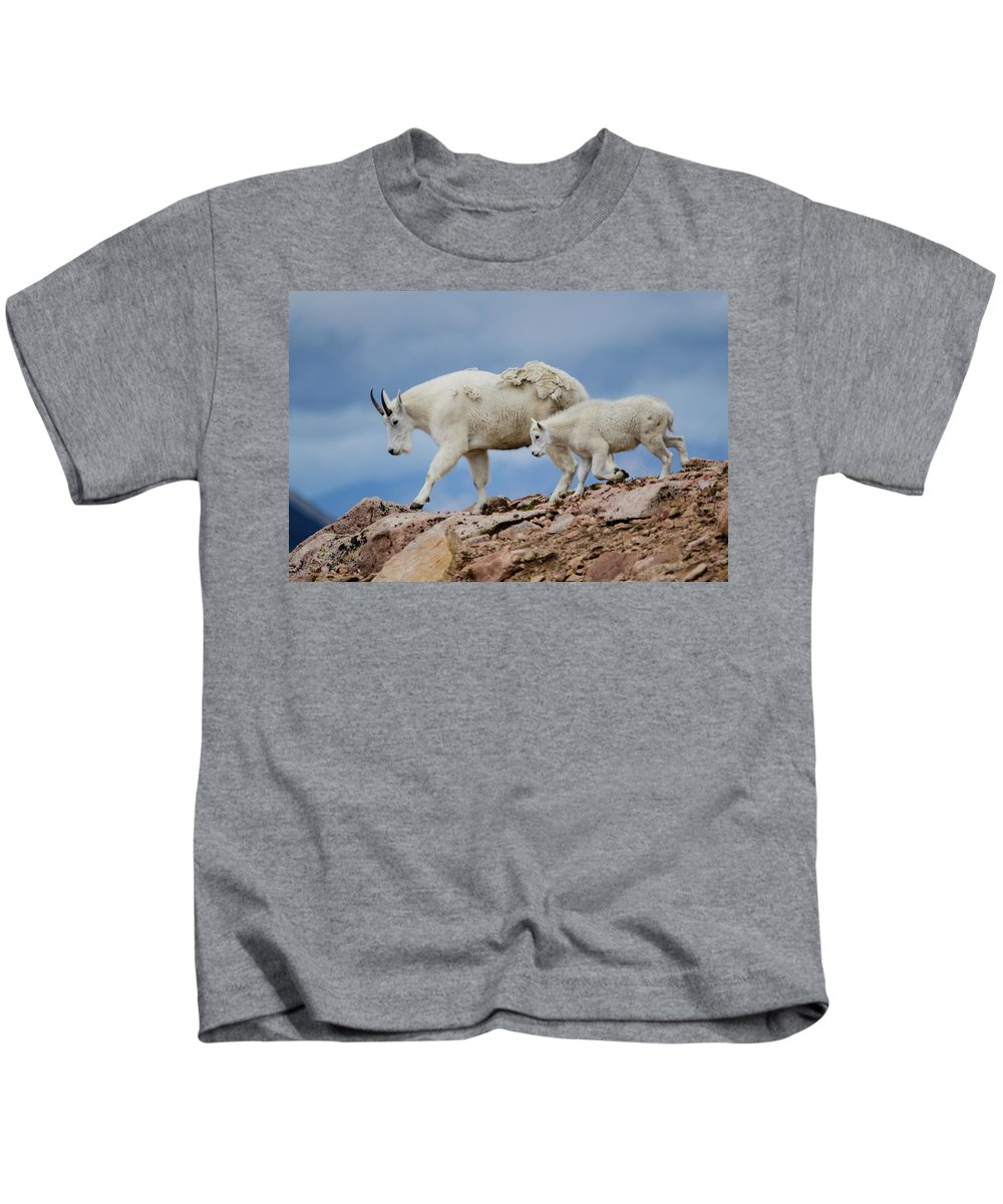 Wildlife Kids T-Shirt featuring the photograph Walking The Ridge. by Jason Bohl