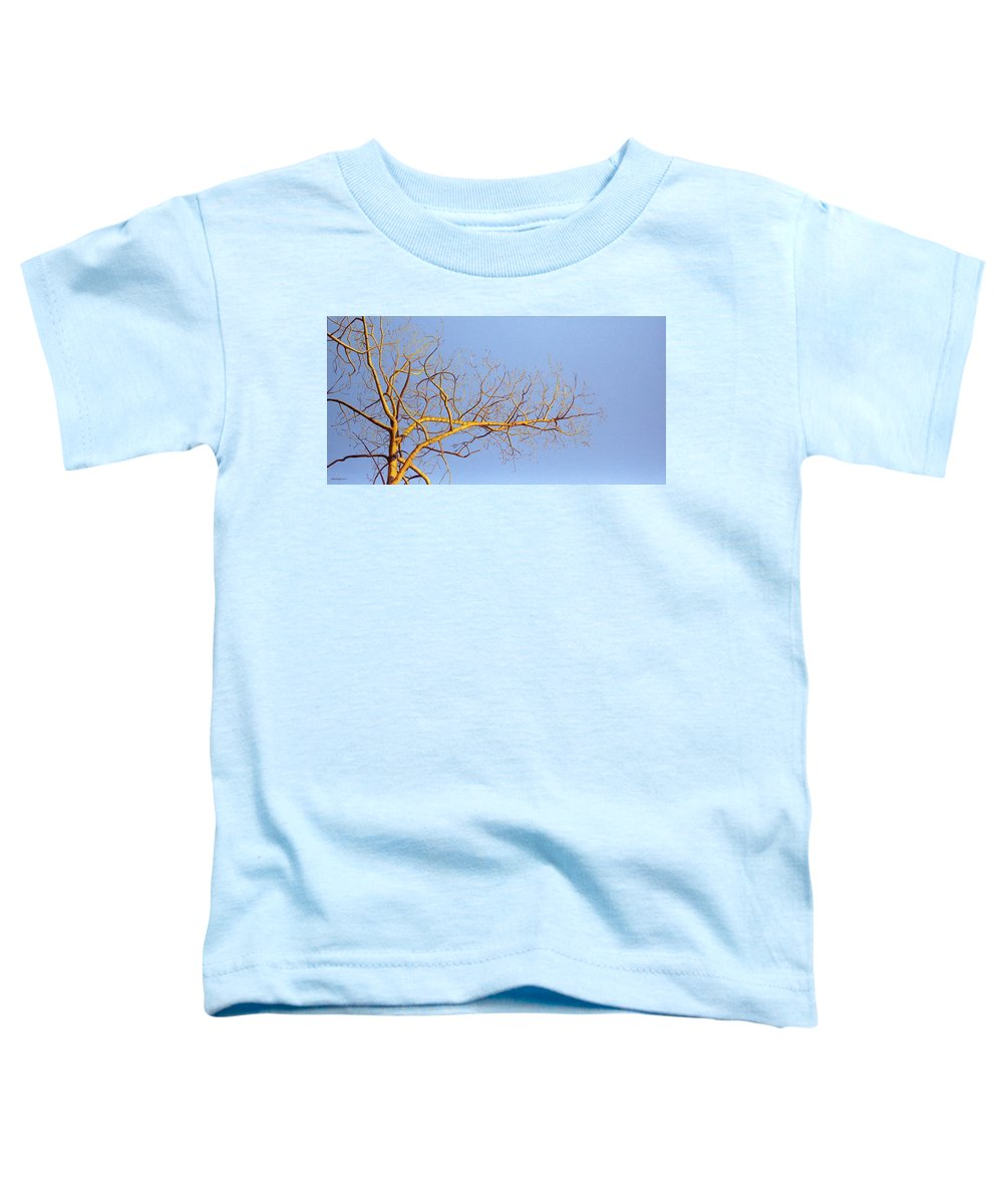 Aspen Painting Toddler T-Shirt featuring the painting Aspen In The Autumn Sun by Elaine Booth-Kallweit