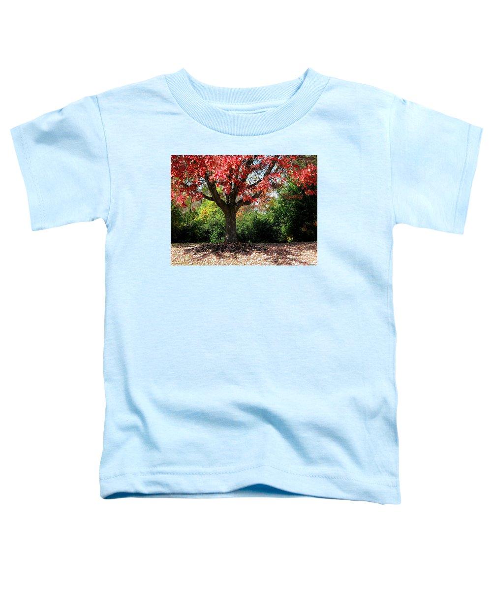 Autumn Toddler T-Shirt featuring the photograph Autumn Ablaze by Ann Horn