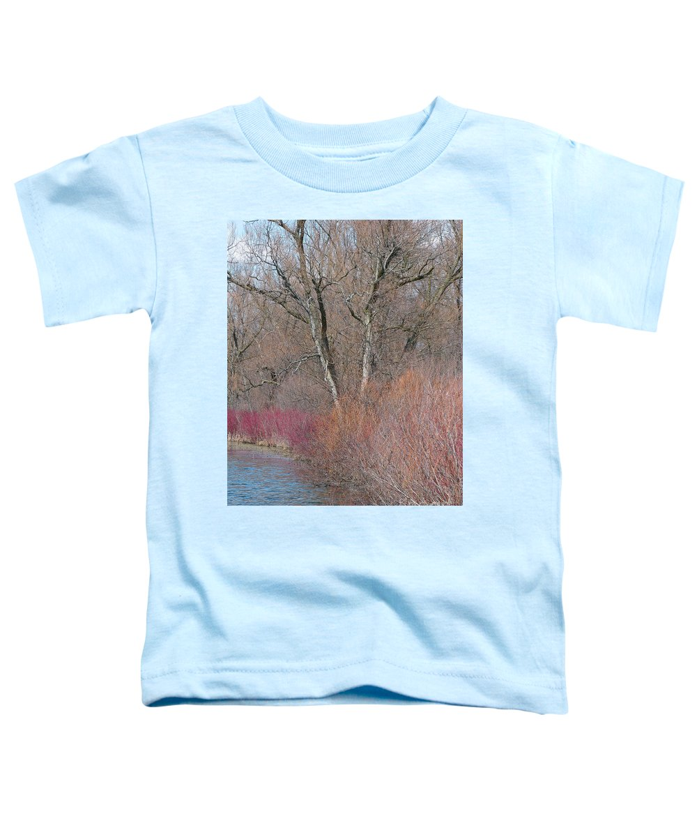 Spring Toddler T-Shirt featuring the photograph Hint Of Spring by Ann Horn