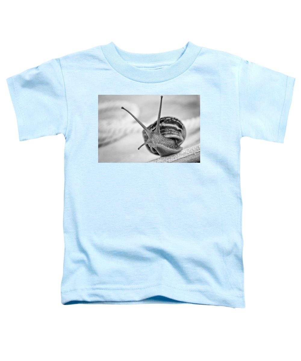 Garden Pests Photographs Toddler T-Shirts