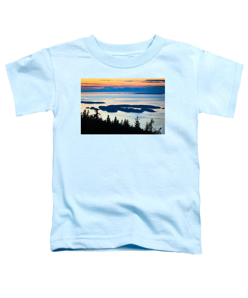 Archipelago Toddler T-Shirts