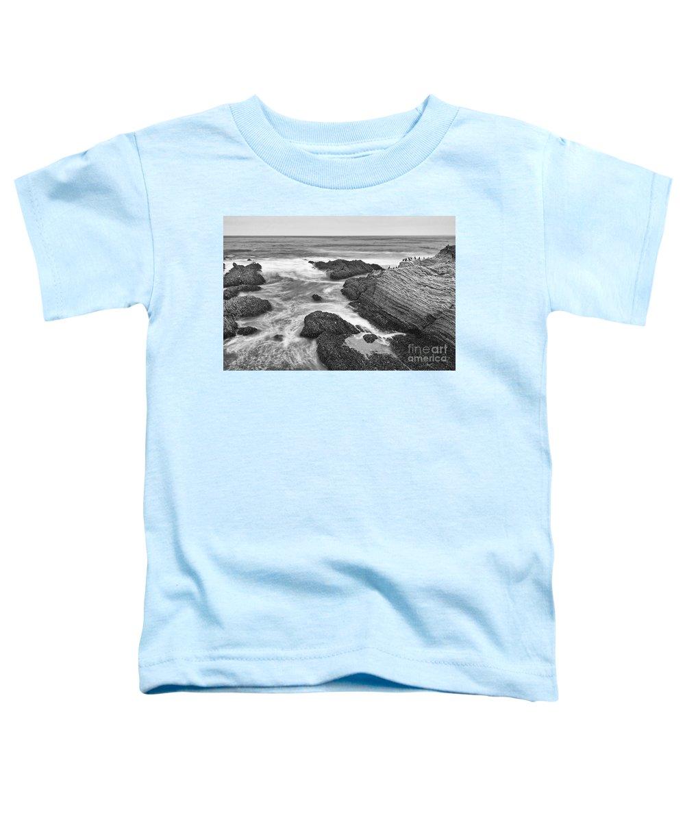 Montana De Oro Toddler T-Shirts