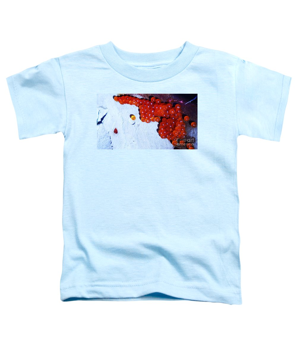 Photograph Fish Egg Lake Water Rock Toddler T-Shirt featuring the photograph Don't Kill Me. by Seon-Jeong Kim