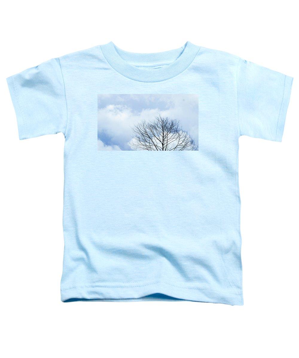 Winter Sky Toddler T-Shirts