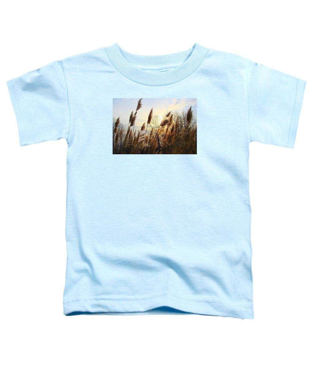 Pampasgrass Toddler T-Shirt featuring the photograph Amber Waves Of Pampas Grass by J R Seymour