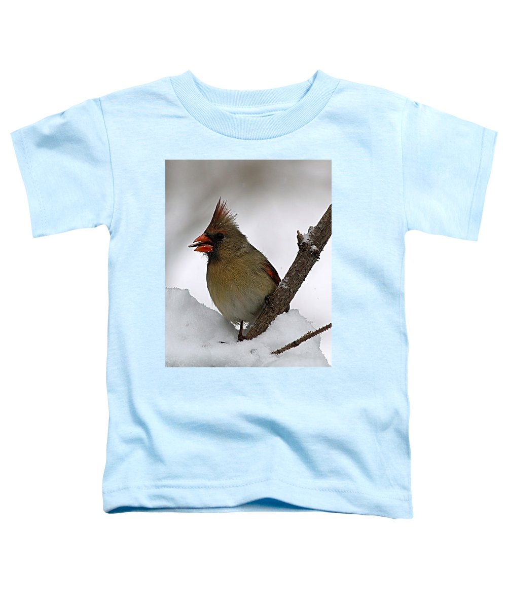 Bird Toddler T-Shirt featuring the photograph I Love Seeds by Gaby Swanson