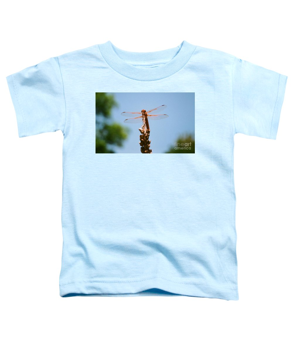 Dragonfly Toddler T-Shirt featuring the photograph Red Dragonfly by Dean Triolo