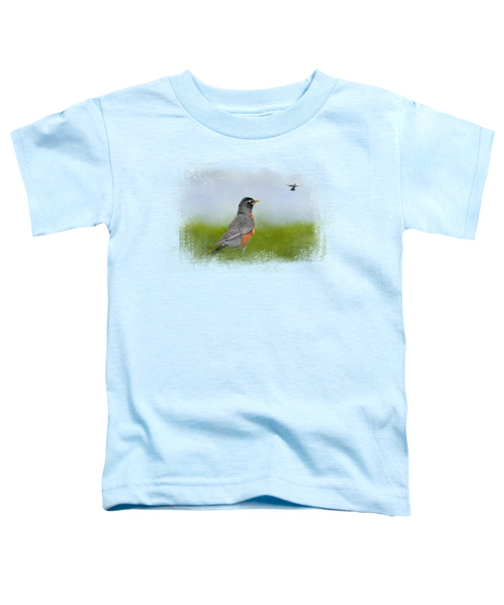 Robin Toddler T-Shirts