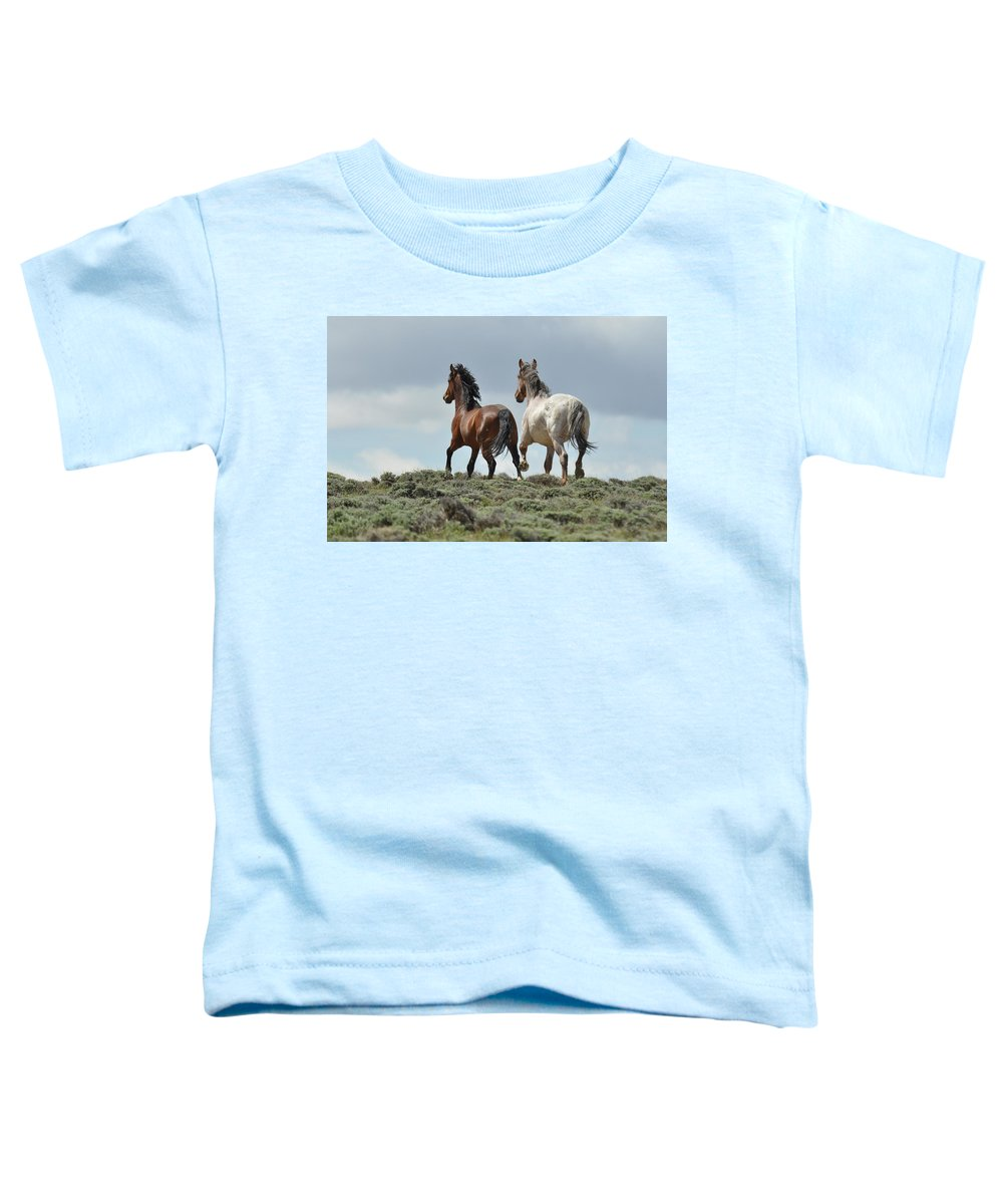 Wild Horses Toddler T-Shirt featuring the photograph Too Beautiful by Frank Madia
