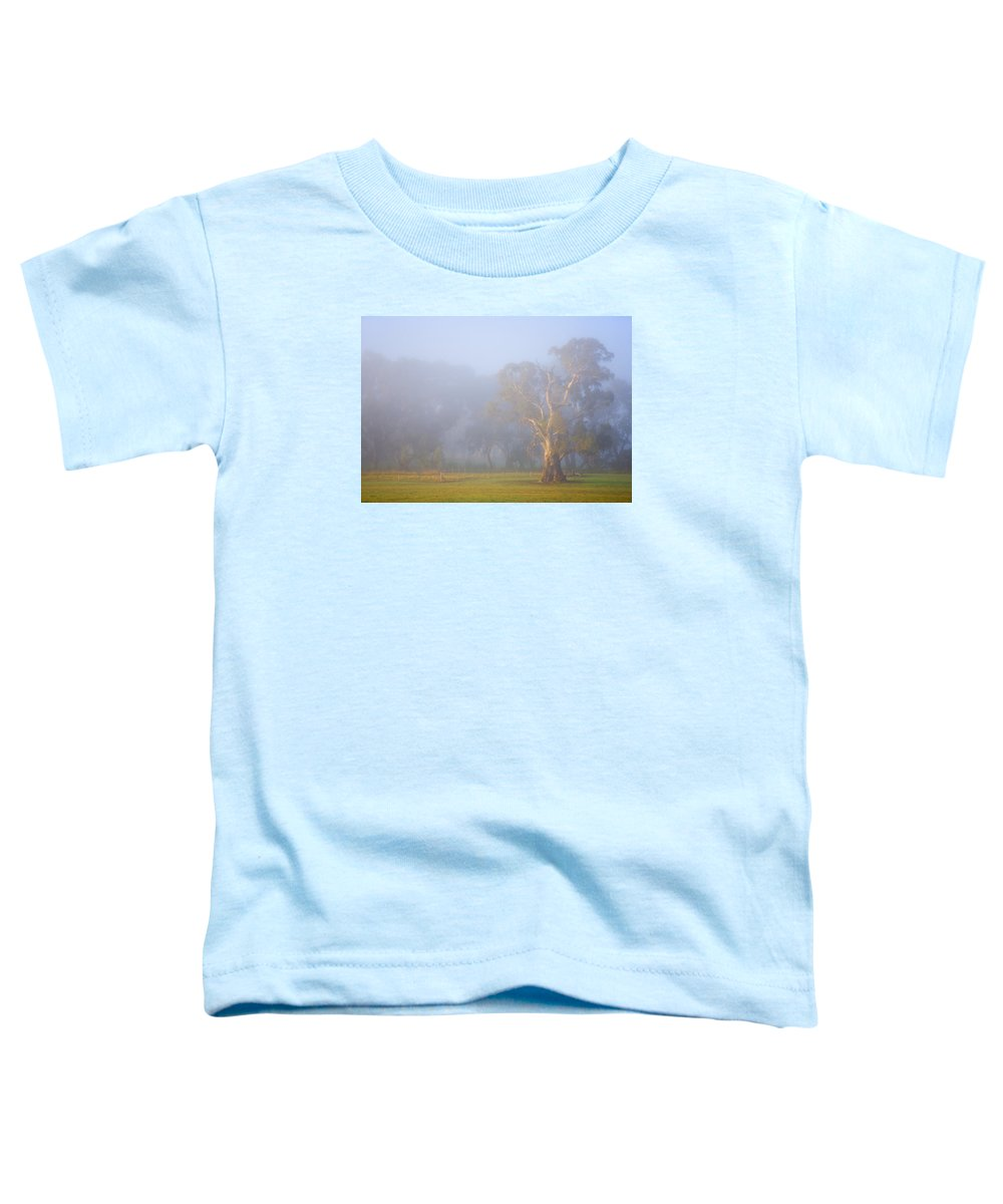 Tree Toddler T-Shirt featuring the photograph White Gum Morning by Mike Dawson