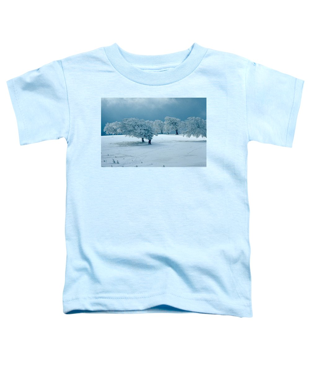 Winter Toddler T-Shirt featuring the photograph Winter Wonderland by Flavia Westerwelle