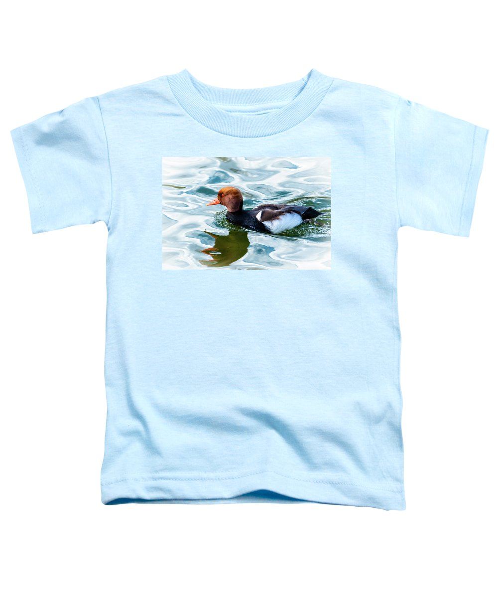 Red Crested Toddler T-Shirt featuring the photograph Red Crested Red Beak Red Eye Duck by Garrick Besterwitch