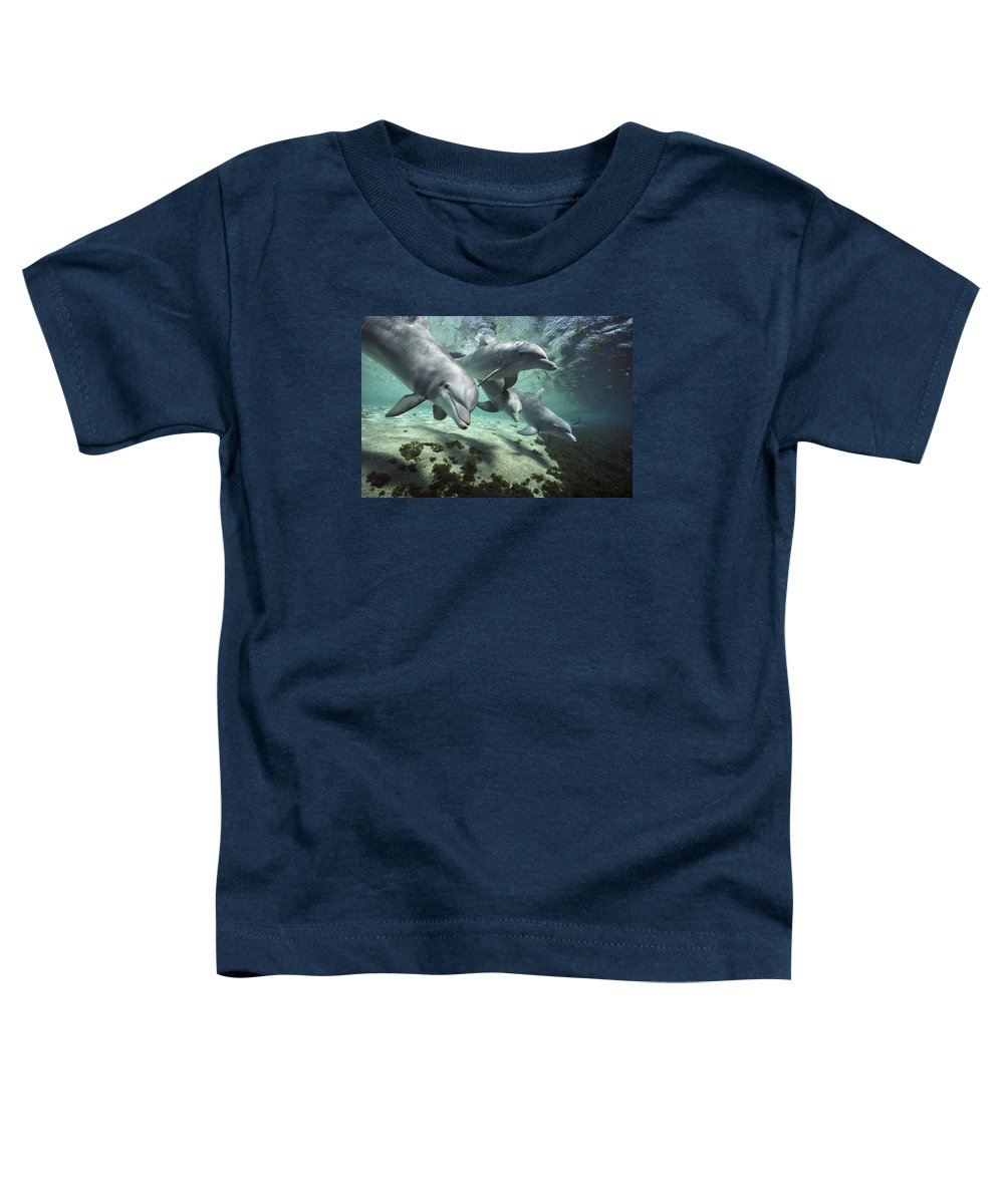 00082400 Toddler T-Shirt featuring the photograph Four Bottlenose Dolphins Hawaii by Flip Nicklin