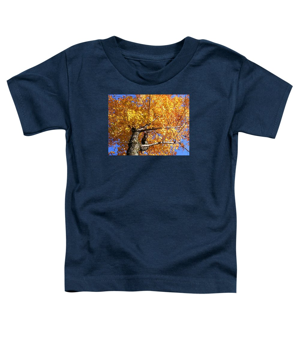 Trees Toddler T-Shirt featuring the photograph Crown Fire by Dave Martsolf