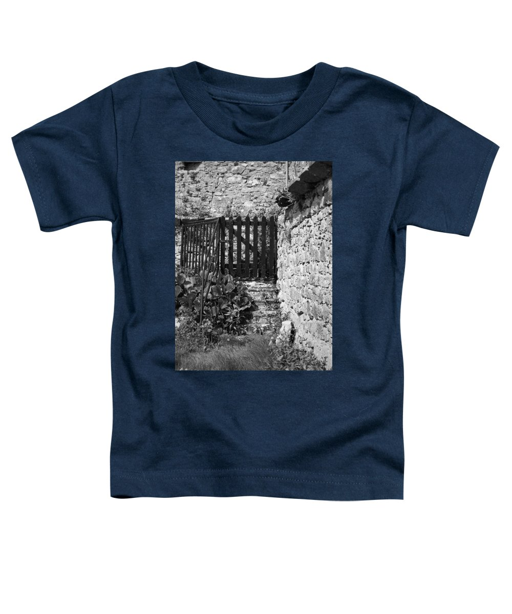Irish Toddler T-Shirt featuring the photograph Gate At Dunguaire Castle Kinvara Ireland by Teresa Mucha