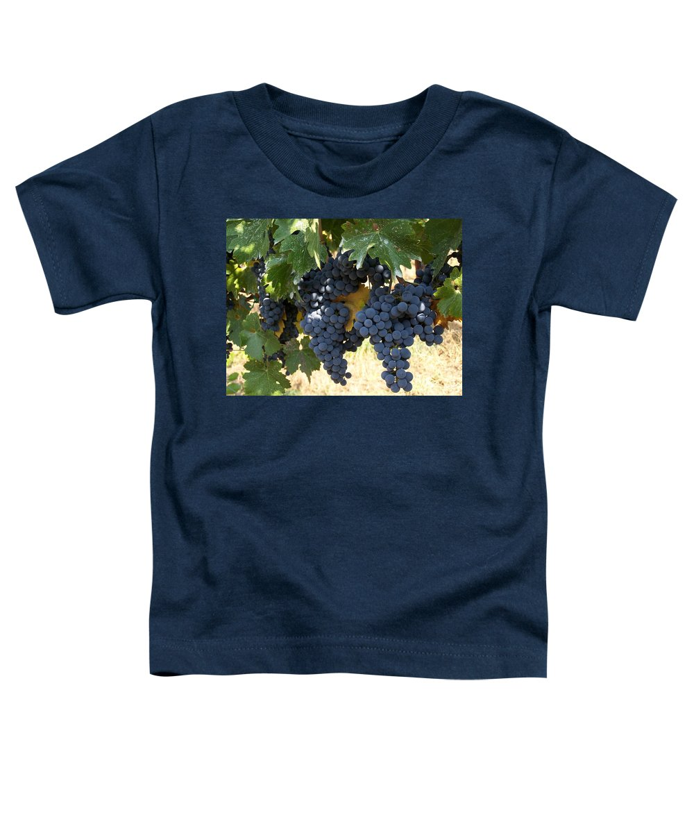 Grapes Toddler T-Shirt featuring the photograph Harvest Time by Gale Cochran-Smith