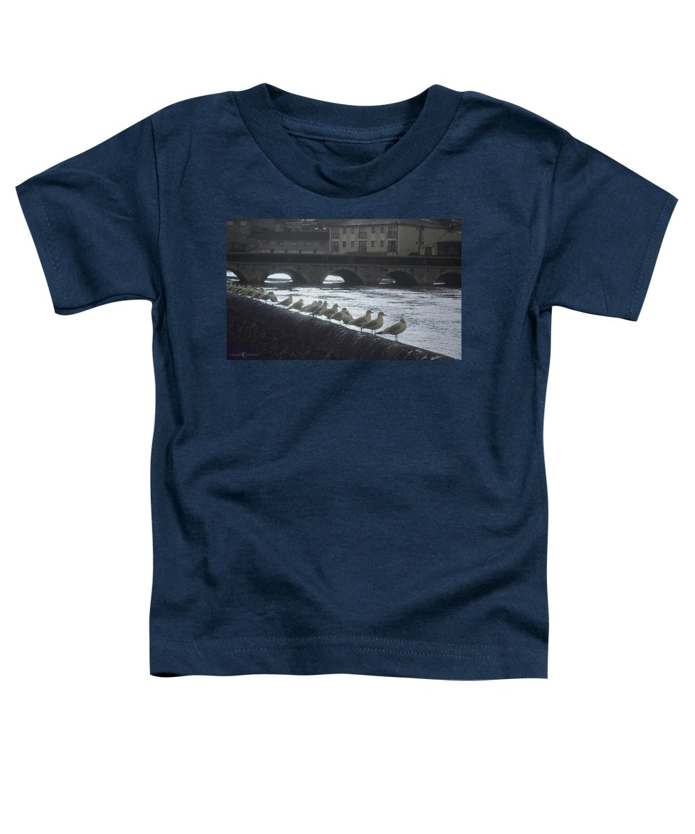 Birds Toddler T-Shirt featuring the photograph Line Of Birds by Tim Nyberg