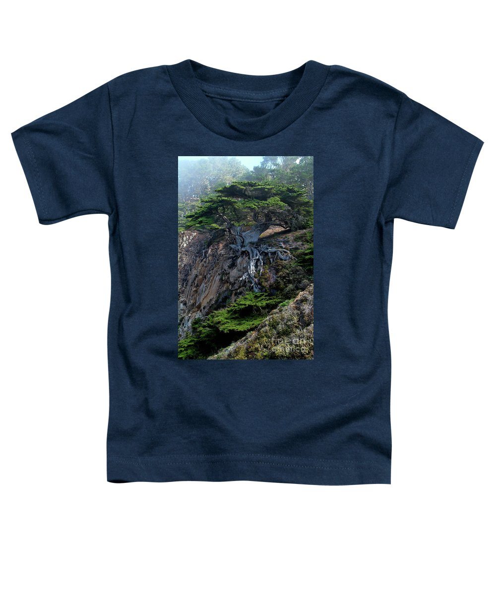 Landscape Toddler T-Shirt featuring the photograph Point Lobos Veteran Cypress Tree by Charlene Mitchell