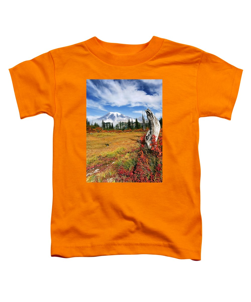 Rainier Toddler T-Shirt featuring the photograph Autumn Majesty by Mike Dawson