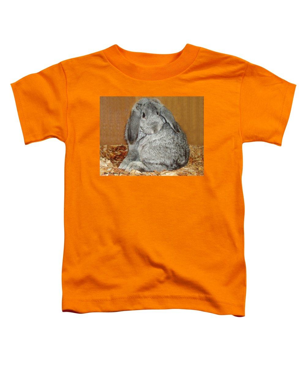 Bunny Toddler T-Shirt featuring the photograph Bunny by Gina De Gorna
