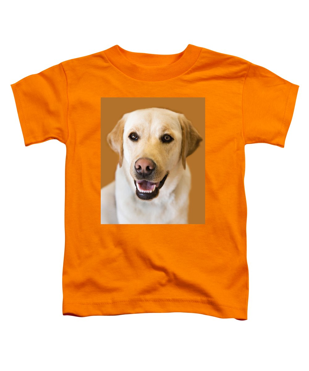 Lab Toddler T-Shirt featuring the photograph Golden Lab by Marilyn Hunt