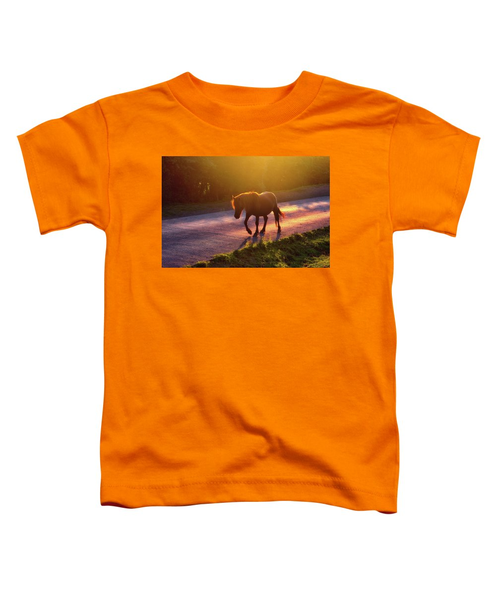Horse Toddler T-Shirt featuring the photograph Horse Crossing The Road At Sunset by Mikel Martinez de Osaba