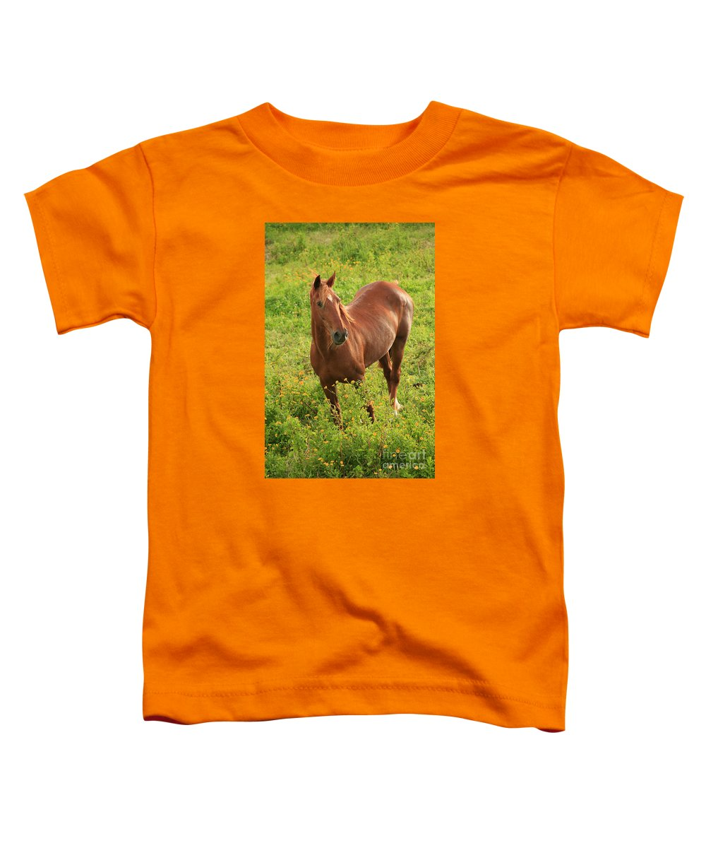 Animals Toddler T-Shirt featuring the photograph Horse In A Field With Flowers by Gaspar Avila