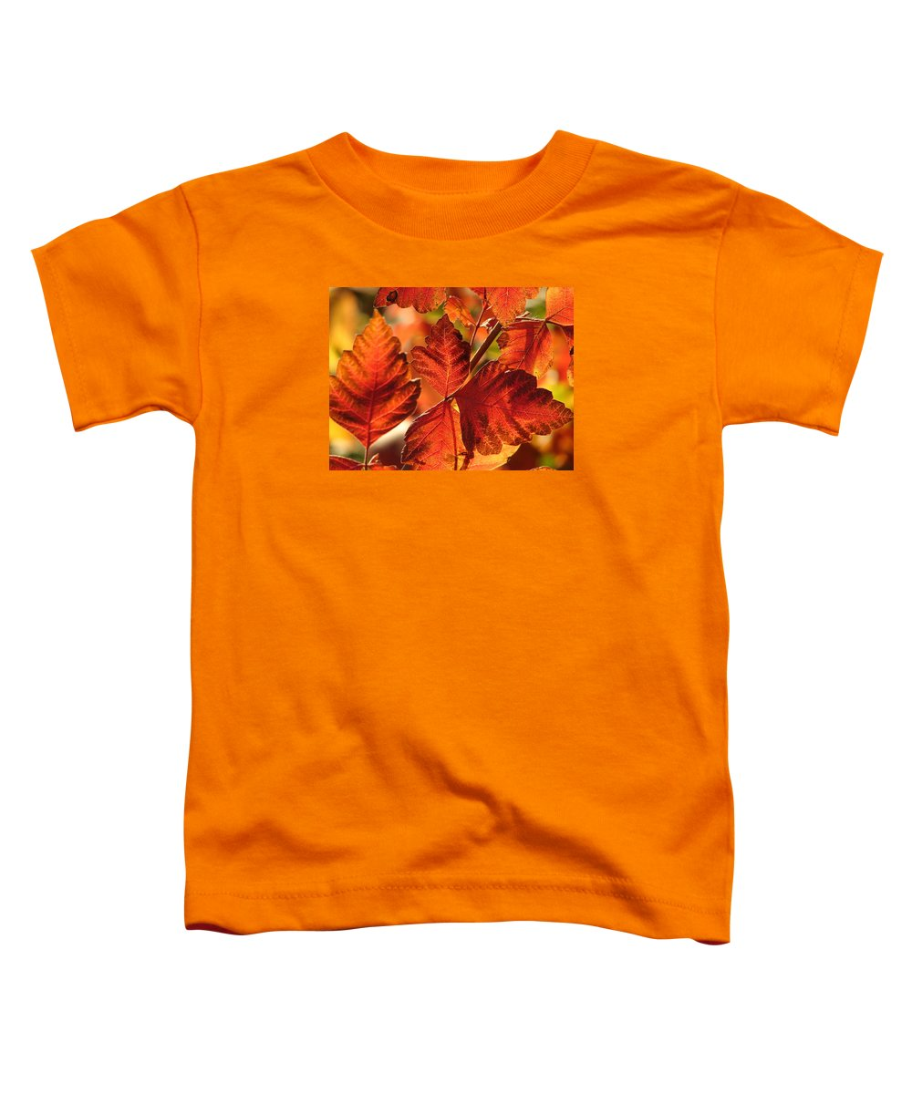Photograph Toddler T-Shirt featuring the photograph Jack Painted My Yard by J R Seymour