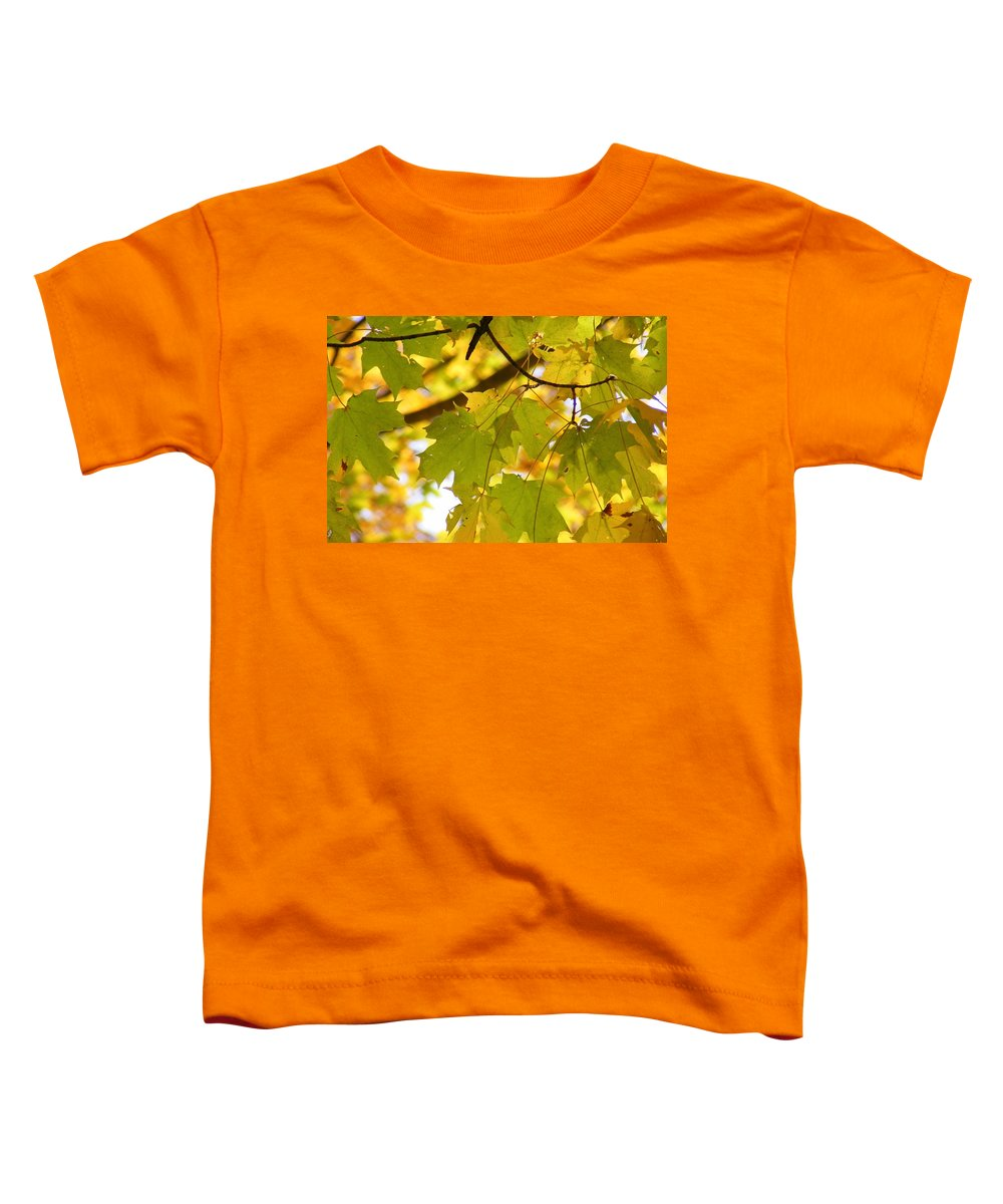 Leaves Toddler T-Shirt featuring the photograph Natures Glow by Ed Smith