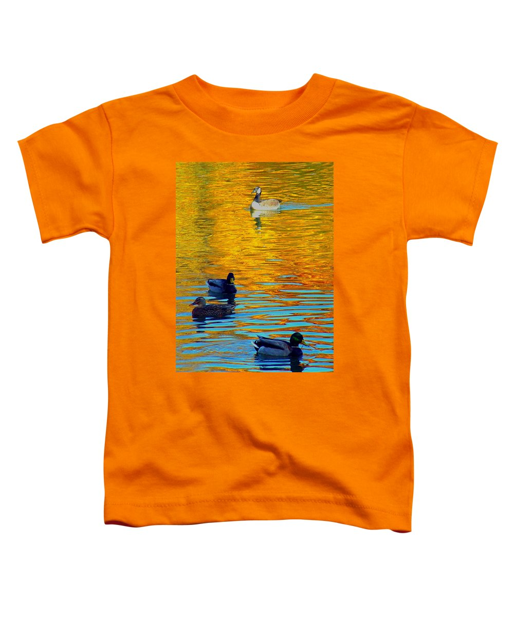 Ducks Malard Lake Gold Canada Geese Blue Toddler T-Shirt featuring the photograph Possibilities by Jack Diamond
