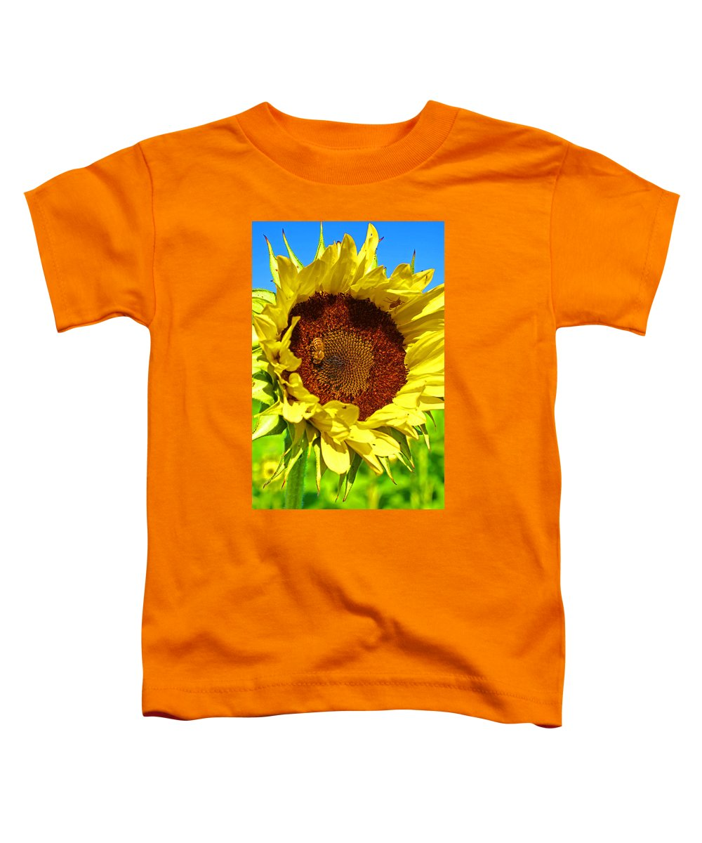 Pastoral Toddler T-Shirt featuring the photograph Sunflower And Bee by Heather Coen