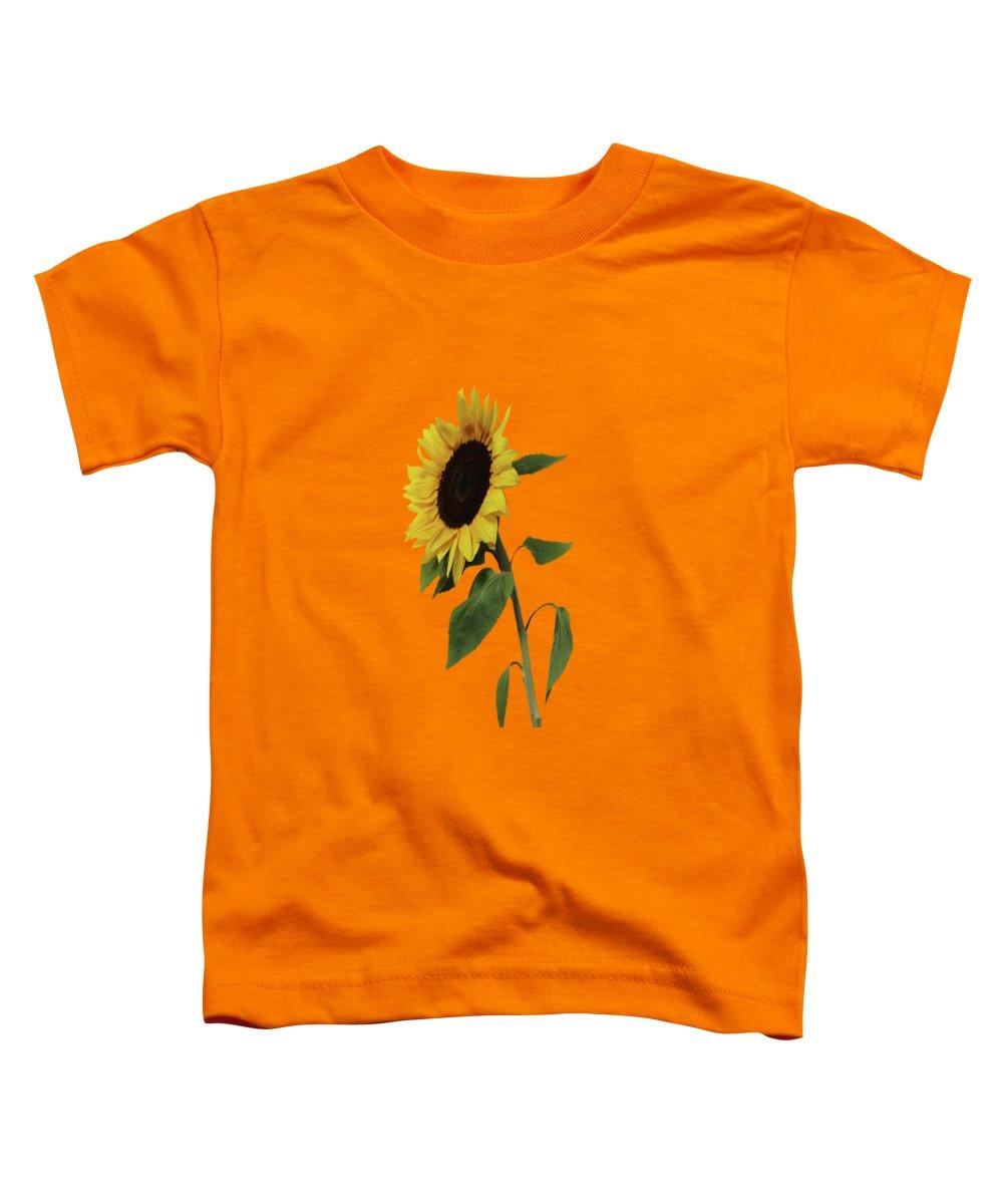 Designs Similar to Sunflower Glow by David Dehner