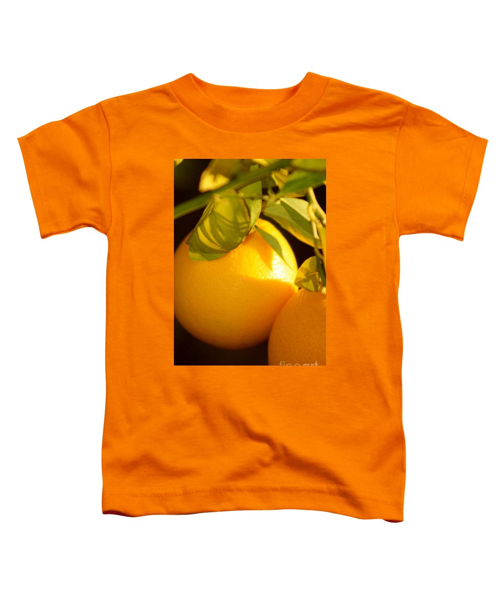 Fruit Toddler T-Shirt featuring the photograph Winter Fruit by Nadine Rippelmeyer