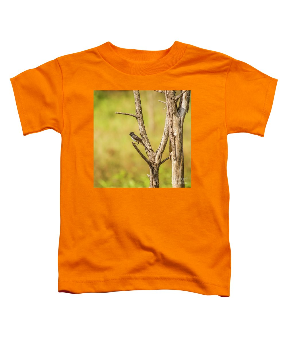 Wildlife Toddler T-Shirt featuring the photograph Willie Wagtail Woodland by Jorgo Photography - Wall Art Gallery