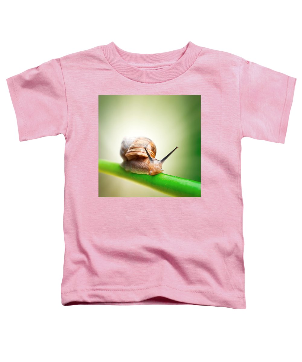 Snail Toddler T-Shirt featuring the photograph Snail On Green Stem by Johan Swanepoel
