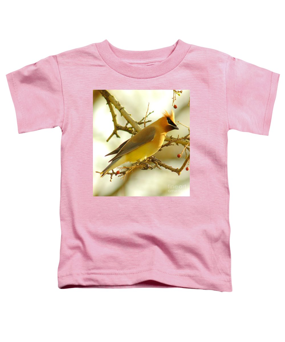 Cedar Waxing Toddler T-Shirts