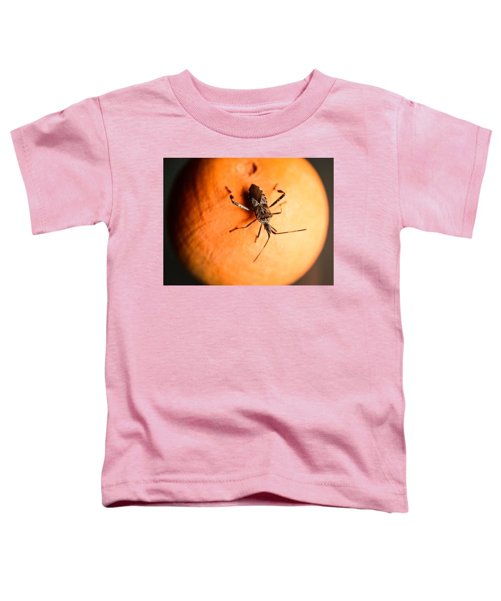 Bug Toddler T-Shirt featuring the photograph The Bug by Marco Oliveira