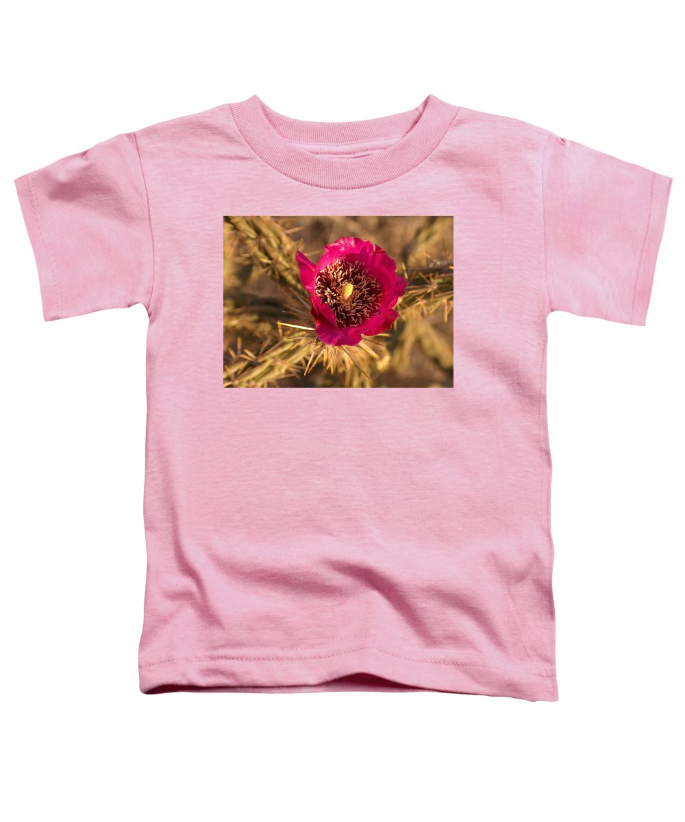 Cactus Flowers Wildflowers Toddler T-Shirt featuring the photograph Cactus Flower 1 by Tim McCarthy