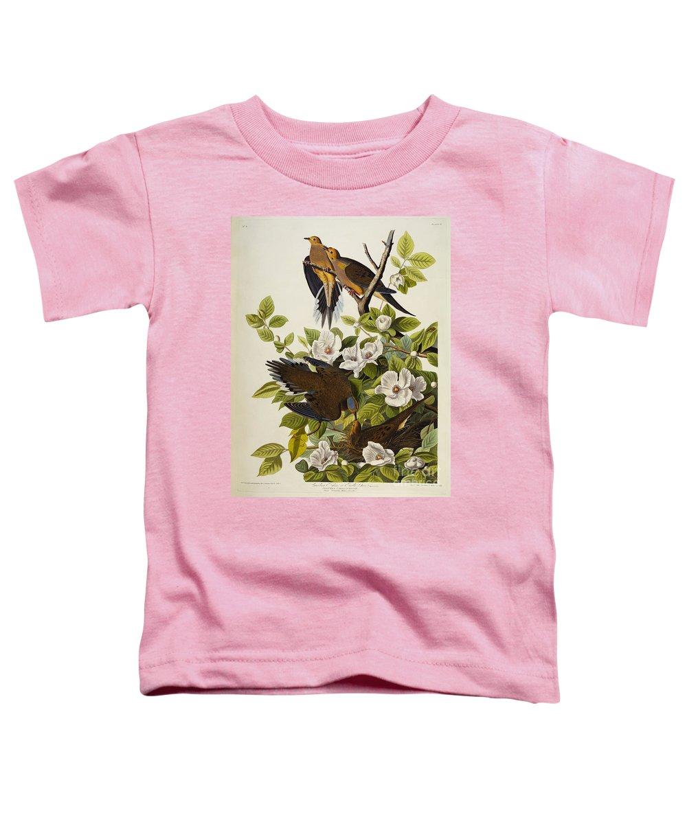 Audubon Drawings Toddler T-Shirts