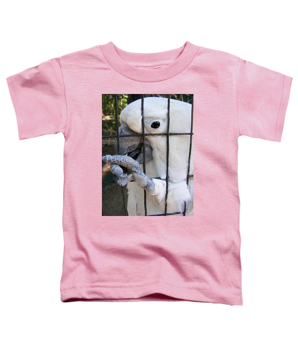 Bird Toddler T-Shirt featuring the photograph Hand Me The Key Please by Ed Smith
