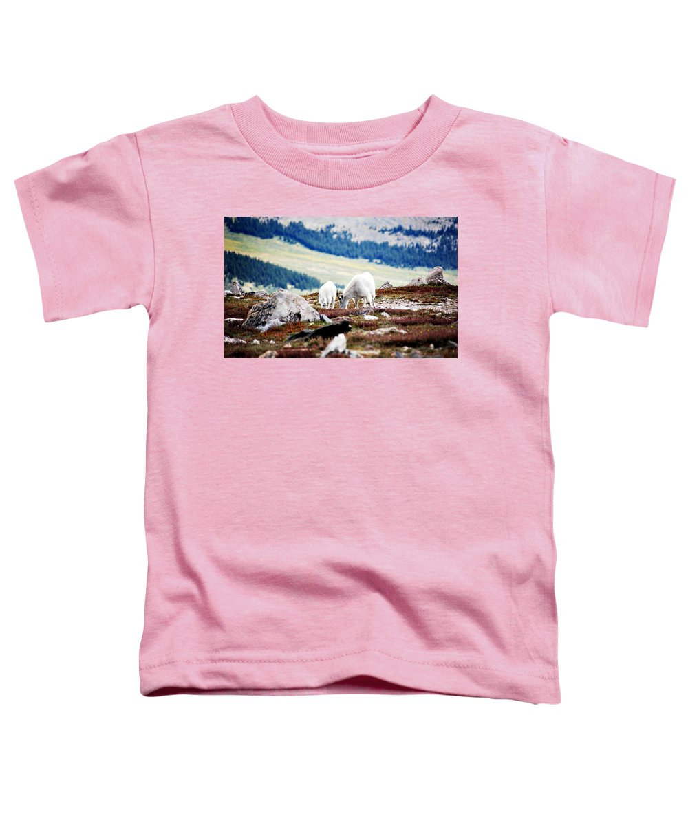 Animal Toddler T-Shirt featuring the photograph Mountain Goats 2 by Marilyn Hunt