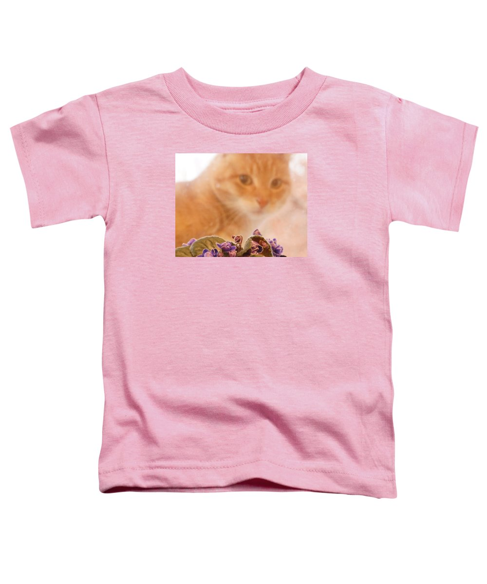 Orange Tabby Cat Toddler T-Shirt featuring the digital art Violets with Cat by Jana Russon