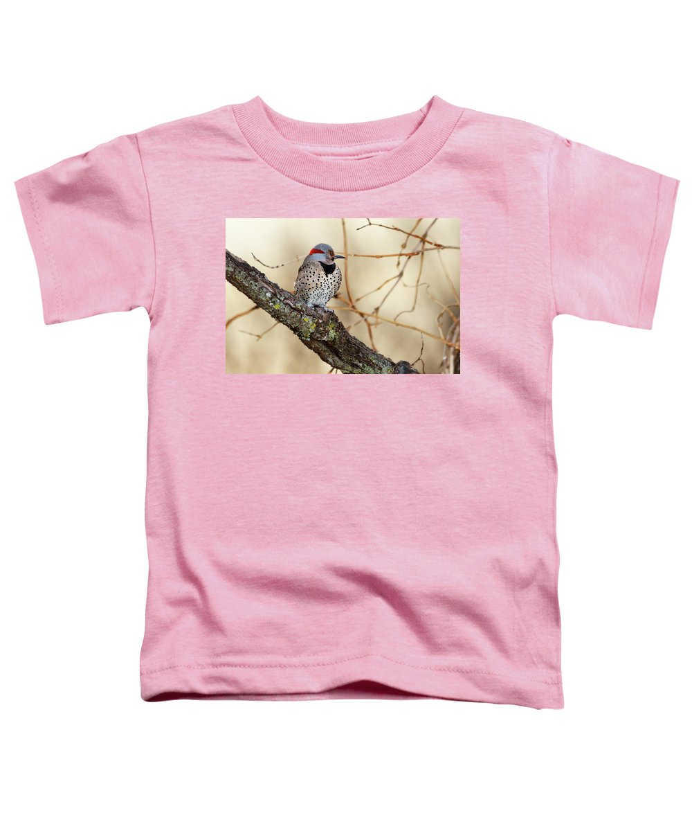 Northern Flicker Toddler T-Shirts