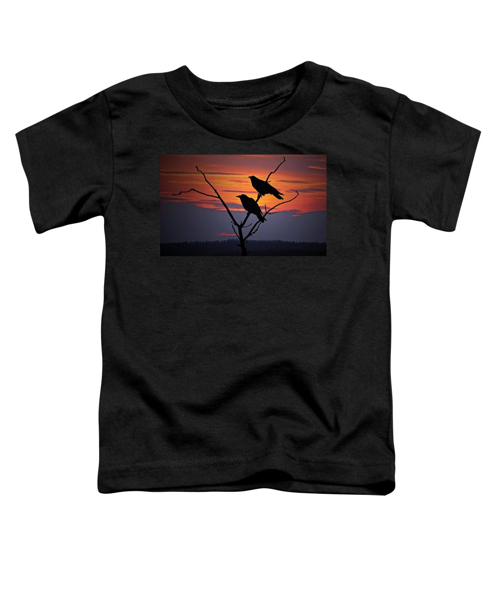 Raven Toddler T-Shirt featuring the photograph 2 Ravens by Ron Day