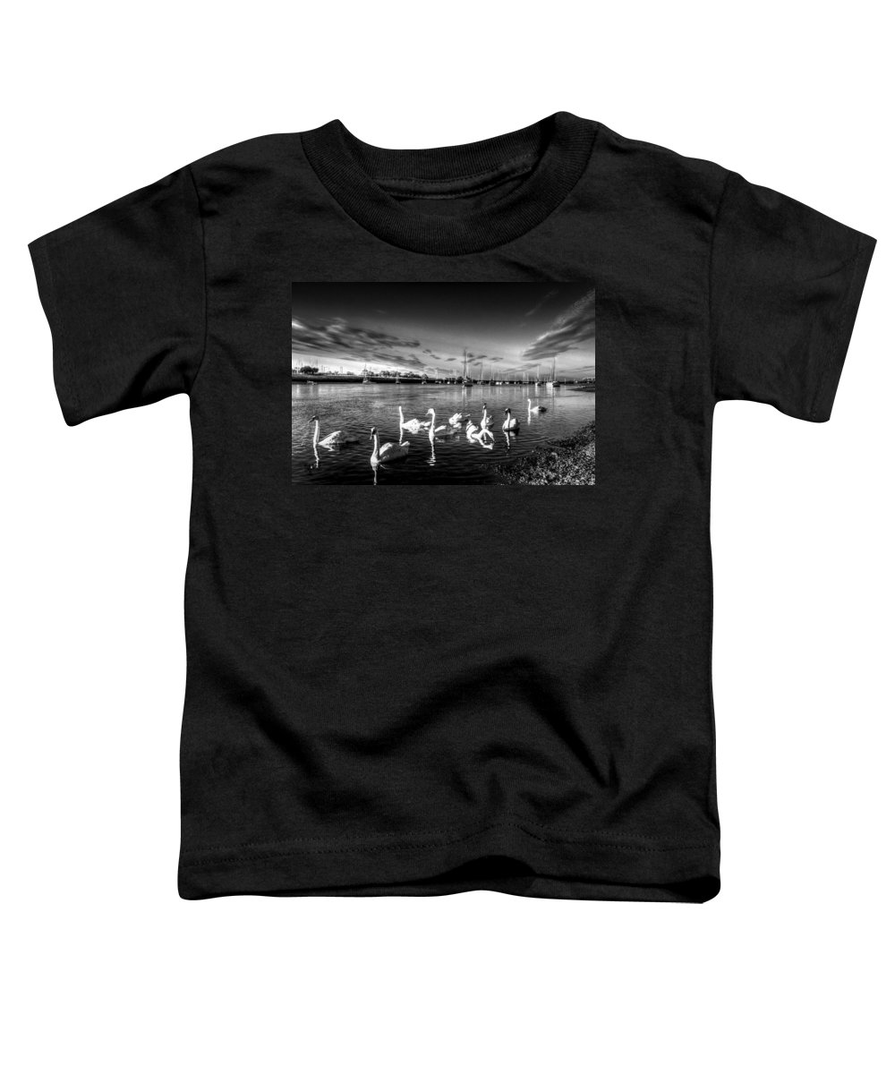 Swans Toddler T-Shirt featuring the photograph Summer Evening Swans by David Pyatt